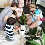 Посадка цветов детьми воскресной школы